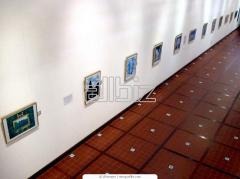 Celebración de exposiciones especializadas